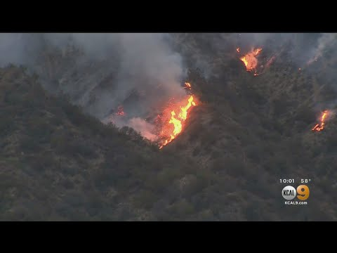 Law Enforcement Search For Arsonist Suspected Of Starting Palisades Brush Fire