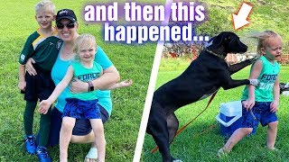 Dog Tackles Owen at Michael's First Soccer Game & Adult Bullying Situation || Mommy Monday
