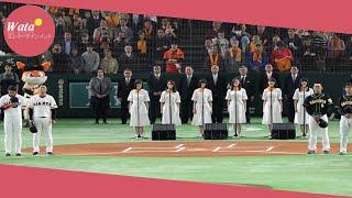 乃木坂46が30日、東京ドームで行われたプロ野球開幕戦(巨人対阪神...