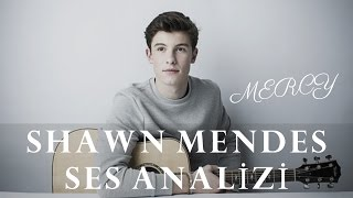 Shawn Mendes Ses Analizi
