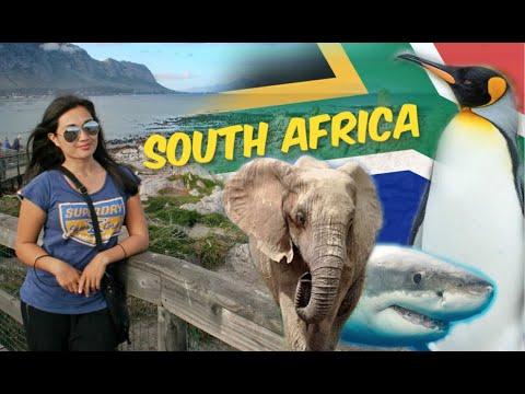 Vegan Crush Travels | South Africa | Garden Route