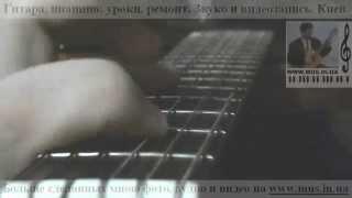 Гитарный кавер Гимн Украины MUS IN UA Уроки в Киеве   гитара, бас гитара, электрогитара Skype