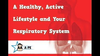 Gcse pe a healthy active lifestyle and your respiratory system edexcel board