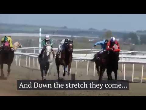 SunDowns Horse Racing 2018
