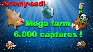 dofus jeremy sadi mega farm dc 6000 captures 36 1360 6000