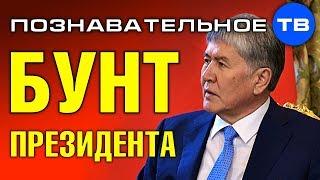Бунт президента Киргизии. Почему арестовали Атамбаева? (Познавательное ТВ, Артём Войтенков)
