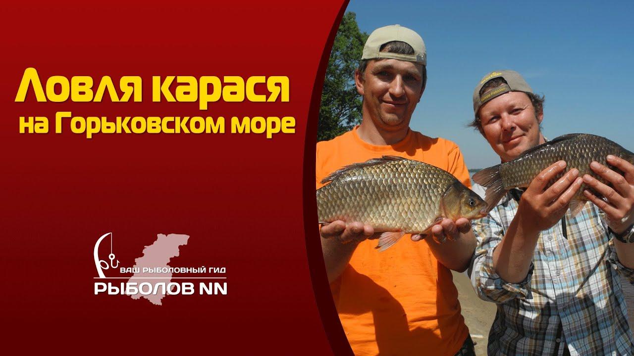 ловля карася в апреле в нижегородской области