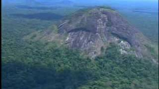 Amapá - Parcs et Réserves naturels