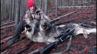 2018 North Idaho Wolf Hunting Brandon Pitcher