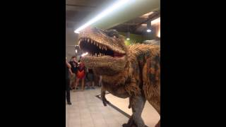 Dinosaur prank in Groupon office