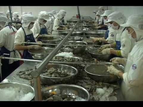 SEAFOOD - CADOVIMEX VIETNAM - Part 2