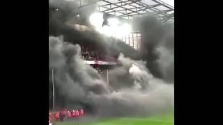 Болельщики FC Köln Жесть