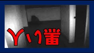 沖縄イジメ動画拡散の反撃方法が今の情報化社会の弱者の武器となる!?...