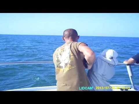 Shark Fishing Trip, July 2012, Ft Myers Beach, FL