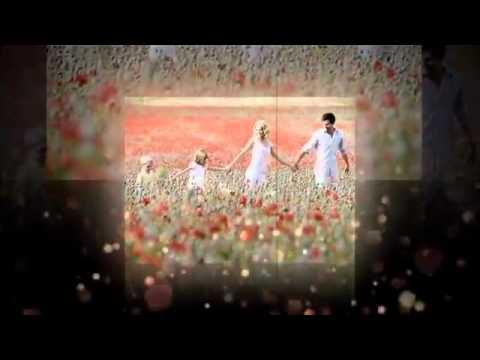 người Mẹ trong mơ lời Việt Thùy Chi hát