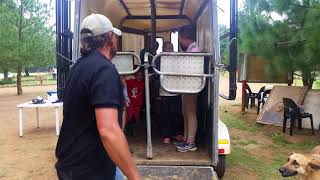 Esperanza Holiday Camps - Horse Box Riding