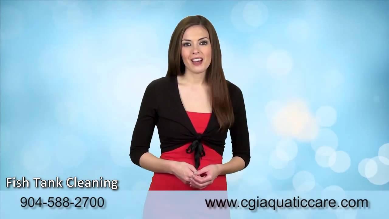 Freshwater aquarium fish jacksonville fl - Custom Saltwater Aquariums Jacksonville 904 588 2700 Jacksonville Fl