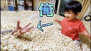 イノシシさん様様です。袋を持っていくと開ける前から鼻を突っ込んでくるのがとても可愛い、、 https://popcorn-papa.com/topics/info/2020-08-02/13893/ ・メイン ...