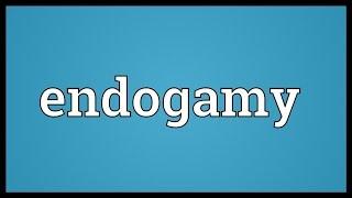 Endogamy Meaning