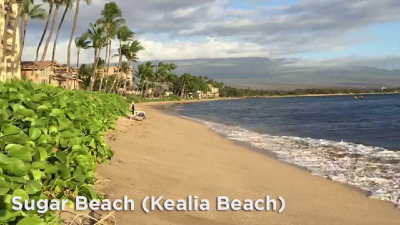 Sugar Beach Maui Kealia Kihei