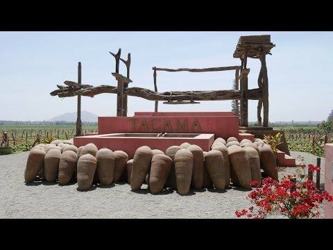 Tacama Winery Ica Peru