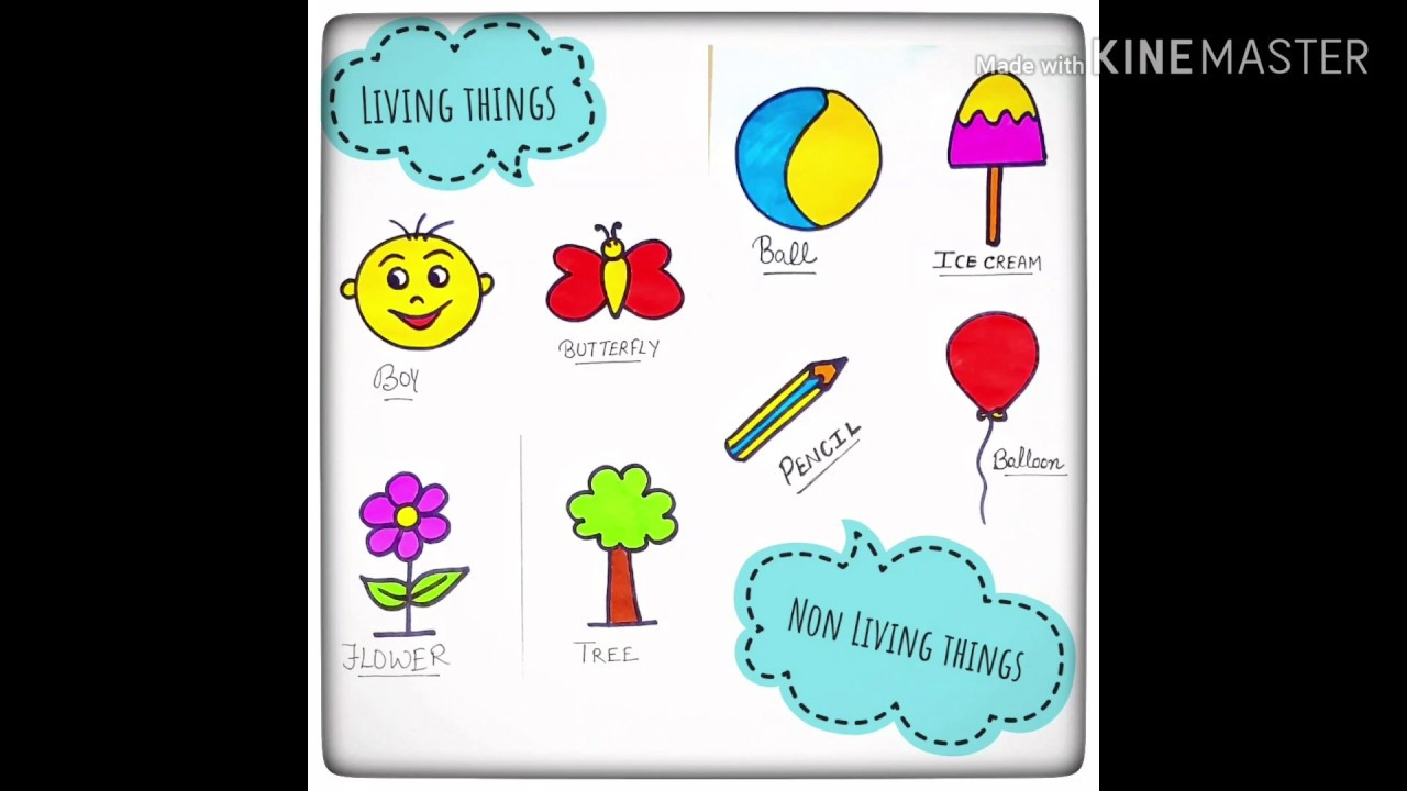 How To Draw Living And Non Living Things For Kids Living Things Nonliving Things Youtube Living And Nonliving Drawings Drawing For Kids [ 720 x 1280 Pixel ]
