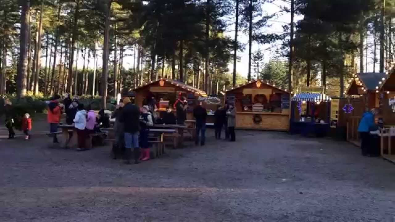 Cannock Chase Visitor Centre Christmas Tree Sales - YouTube