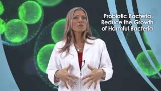 Yoli PURE Digestive and Immune Health