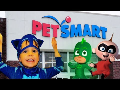PJ Masks Catboy SEARCH for Gekko Petsmart & Incredibles 2 Jack Jack Attack!