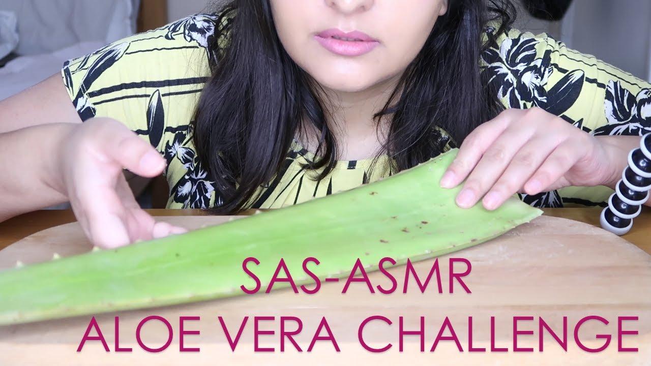 Sas Asmr Aloe Vera Challenge Sticky Slimey Crunchy Sounds Eating raw honeycomb, slime, aloe vera (sticky crunchy sounds). youtube