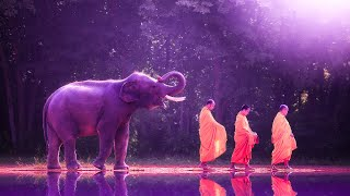 Soothing Music to Remove Negativity | 528Hz Music For Meditation | Miracle Healing Frequency | Zen