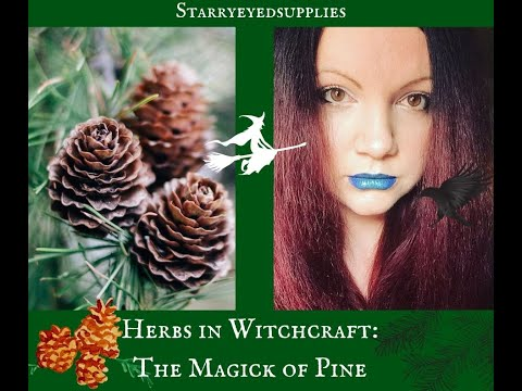 I can't Witch without... Pine