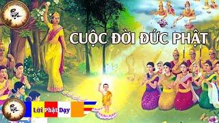 Câu Chuyện Phật Giáo Hay Nhất  - Cuộc Đời Đức Phật Thích Ca Mâu Ni ( phần 1 ) - Kể truyện Đêm khuya