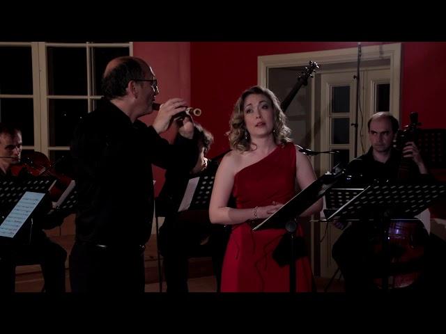 [PROMO] Камерный оркестр Тарусы 2017