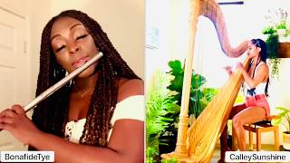 Jhené Aiko ft H.E.R. - B.S. (Flute and Harp Cover)