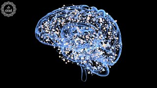 Increase Oxygen Level in The Brain | Blood Circulation in Brain Music | Meditation for Brain Health