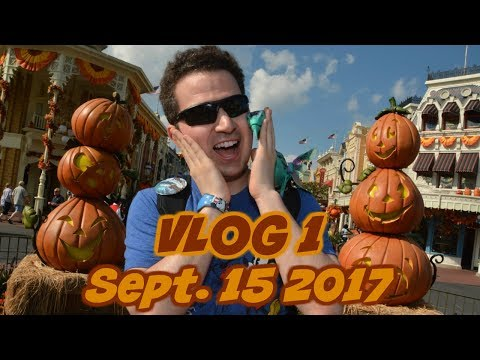 Welcome Home 🛬 VLOG 1 | Sept 2017 | Walt Disney World