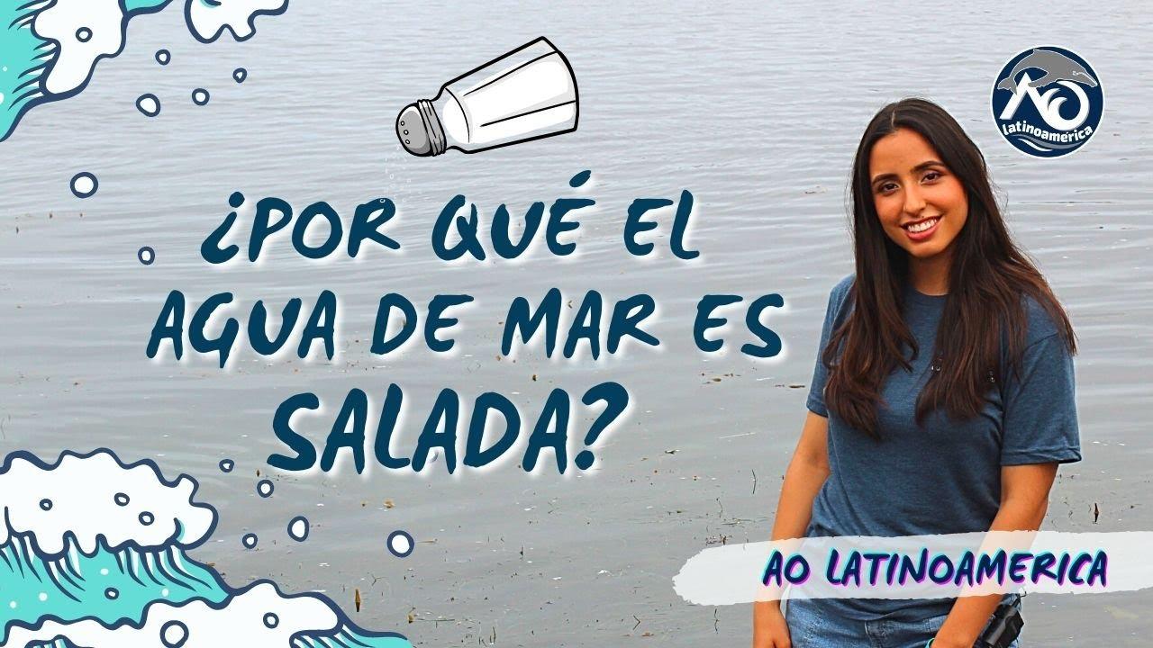 ¿POR QUÉ EL AGUA DE MAR ES SALADA?🧂 | AO Latinoamérica