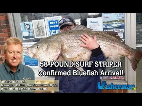 May 3, 2018 New Jersey/Delaware Bay Fishing Report with Jim Hutchinson, Jr.