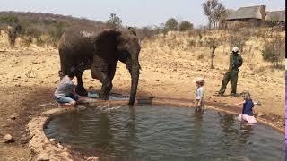 Splashed by an Elephant