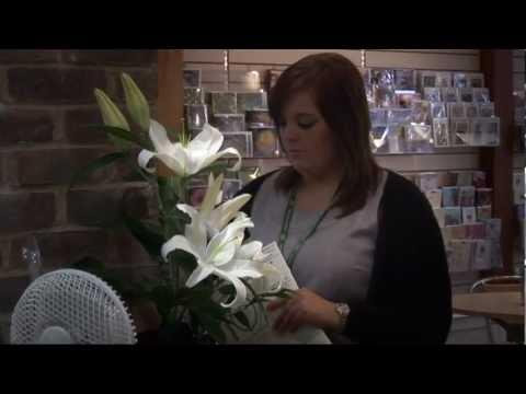 Apprentice: Hospice in the Weald
