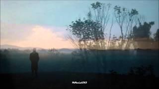 The Walkabouts - Nightbirds (HD, HQ) + lyrics