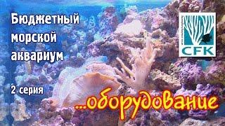Бюджетный морской аквариум. 2 Серия.(В данной части сериала рассказывается об оборудовании бюджетного морского аквариума, организации течения..., 2016-11-10T22:35:09.000Z)