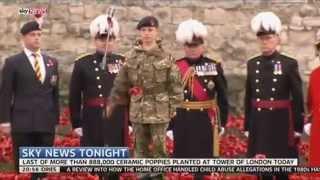 First World War Symbolism: Why Poppies?