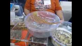 Reptile Expo NH Winter 2014