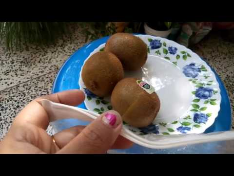 188 How to grow KIWI/ CHINESE GOOSEBERRY from seed(Hindi /Urdu) 6/11/16