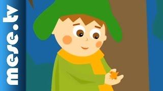 Gryllus Vilmos: Őszi falevél (gyerekdal, mese, Félnóta sorozat)