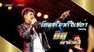โสดจริงหรือเปล่า - วงแทมมะริน Feat.กุ้ง นนทิยา [cover] มิน เฉาก๊วย