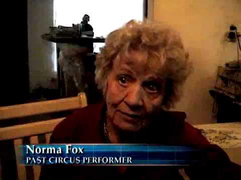 SNN6: Dangers circus performers face