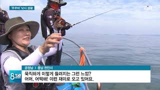 [TJB뉴스] 서해 가을 '주꾸미' 제철..낚시꾼 몰려
